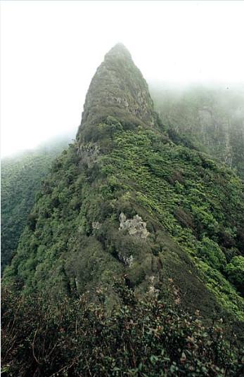 Sur les hauteurs de l'île de Robinson Crusoé, ces rochers auraient servi d'observatoire au marin Alexander Selkirk, abandonné quatre ans et quatre mois sur l'île.