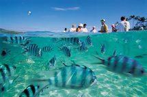 Tourisme: La destination Fidji refait le plein en Australie… Et ailleurs