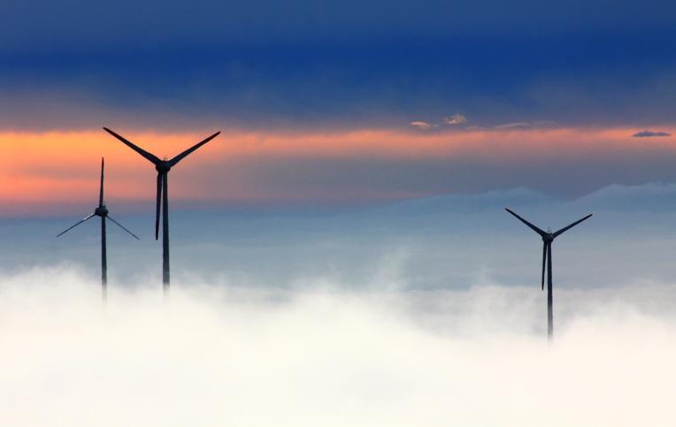 Vendée: feu vert à la construction d'un parc éolien en mer contesté