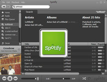 """Le site internet Spotify veut diffuser """"toute la musique du monde"""""""