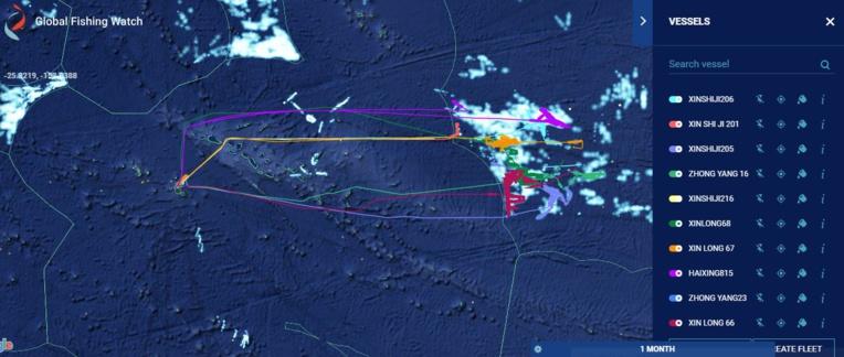 Le parcours de 10 bateaux de pêche chinois pendant le dernier mois. Ils sont en ce moment à quai à Papeete.