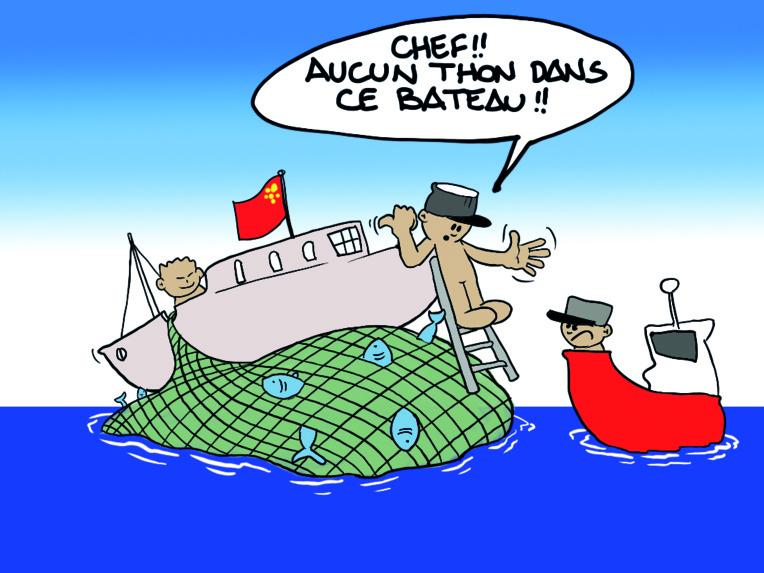 """"""" Les thoniers chinois """" vu par Munoz"""