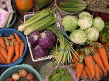 Controverse autour d'un nouveau mode moins polluant de culture des légumes
