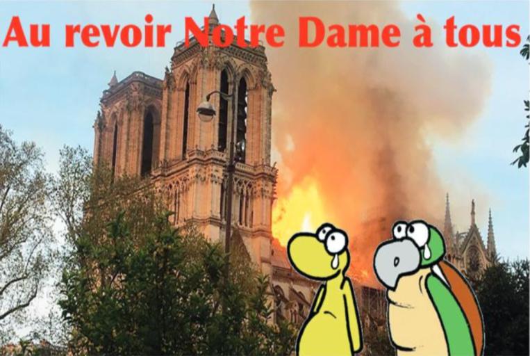 """"""" La cathédrale Notre Dame de Paris """" vu par Munoz"""