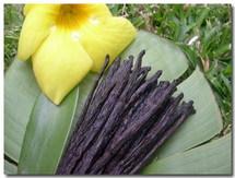Le gouvernement de Polynésie française dément tout projet de commerce de vanille avec les îles Cook