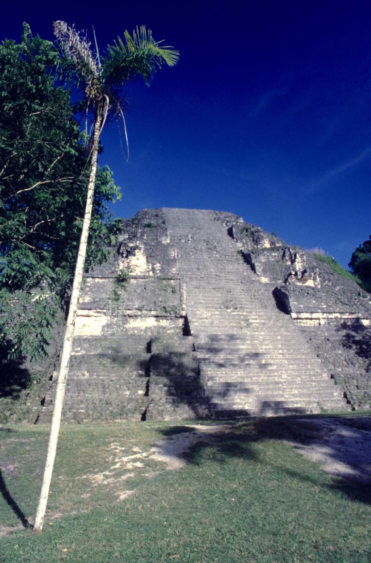 La grande pyramide restaurée (structure 5C) ; il y a quelques décennies, ce n'était qu'un monticule de végétation informe...