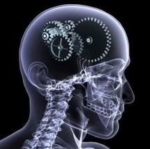 Cerveau, internet et jeux: un cocktail vitaminé pour le progrès scientifique