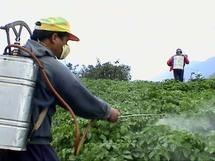 Bruxelles veut inciter les agriculteurs à mieux protéger l'environnement