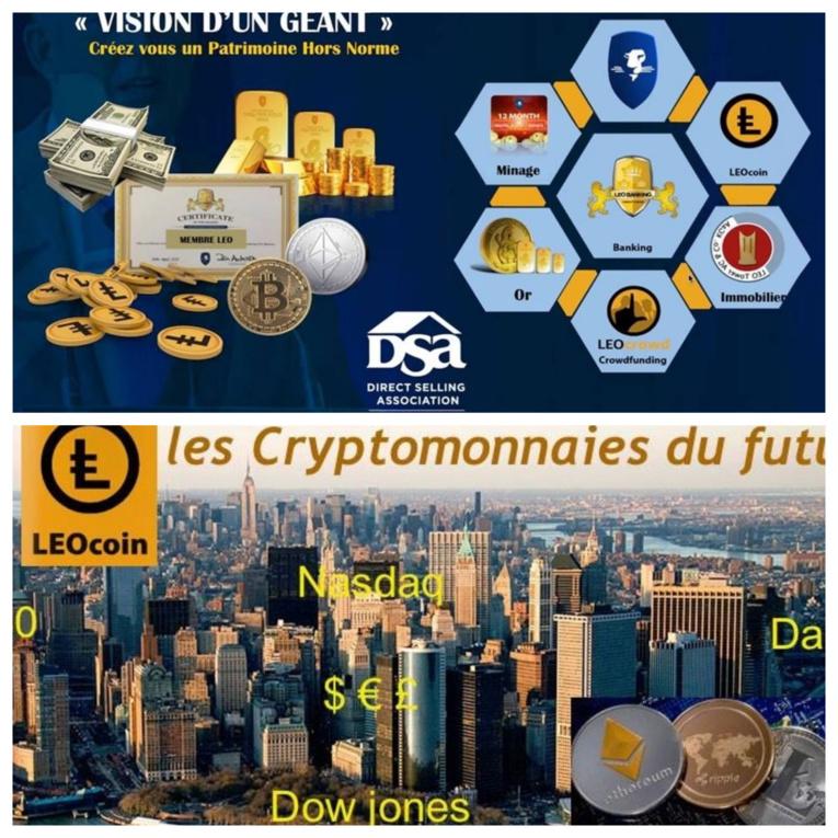 Se basant sur le succès du Bitcoin, les promoteurs des leocoins assurent que ceux-ci vont voir leur valeur grandir. Pourtant les prix sur le site internet des leocoins sont indiqués en livres sterling… A aucun moment, il n'est indiqué qu'on peut acheter en leocoins sur leur propre site internet…