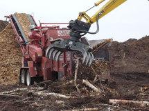 Greenpeace affirme que la biomasse forestière pollue plus que le charbon