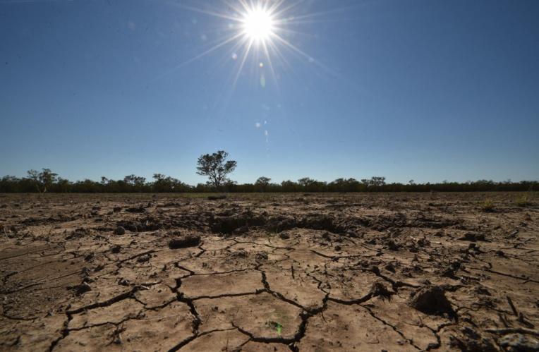 Face à la sécheresse, Sydney impose les premières restrictions d'eau en 10 ans