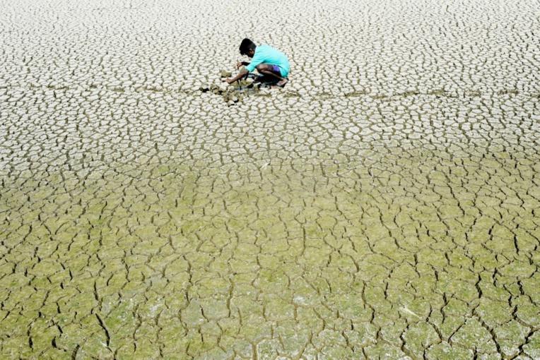Dans l'Inde en sécheresse, un homme tué dans une rixe pour de l'eau
