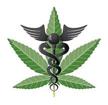 USA: deux Etats veulent faciliter l'usage médical de la marijuana