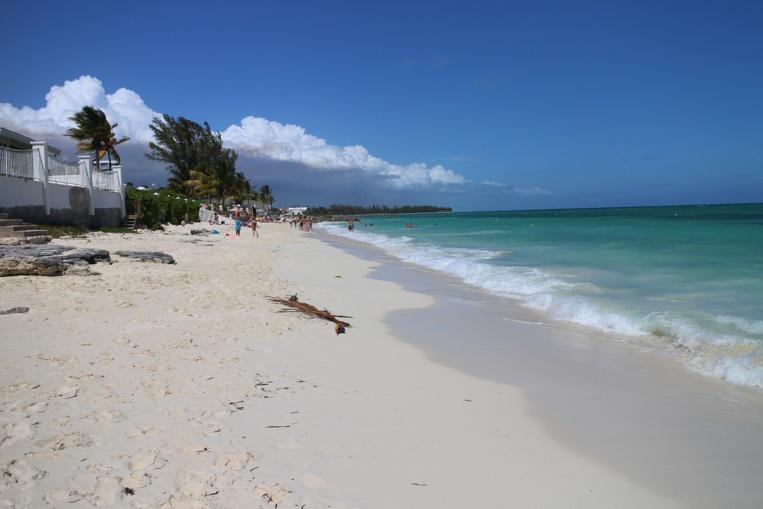 Une Américaine tuée par des requins aux Bahamas