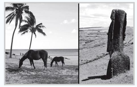 Paysages de l'Île de Pâques, des ressemblances certaines avec les Îles Marquises..