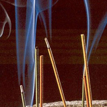 La production d'encens menacée de disparition