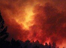 Chili: l'incendie en Patagonie a détruit 5.700 hectares