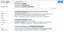 Une entreprise lyonnaise fait condamner Google France pour injures publiques
