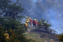 Deuxième incendie au Chili: un mort et 8.000 ha détruits