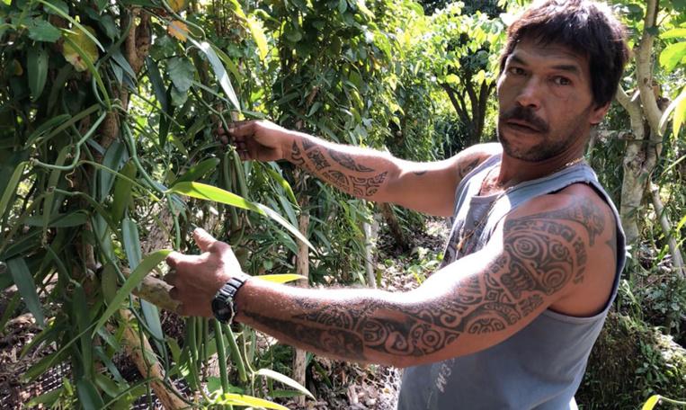 """J'ai commencé avec quatre lianes et quatre espèces différentes de vanille"", explique Tagirao Teara Mamatamoe, alias Stan."