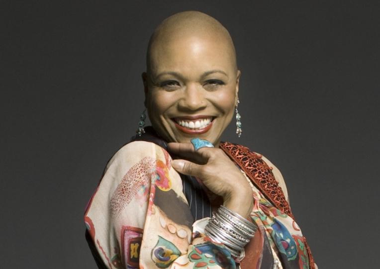 Plusieurs grands noms du jazz et de la soul se produiront lors de ce festival, parmi eux Dee Dee Bridgewater, chanteuse américaine nominée huit fois aux Grammy Awards, vainqueur de deux Grammy Awards et un Tony Awards.