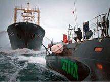 Trois écologistes montent sur un navire protégeant les baleiniers japonais