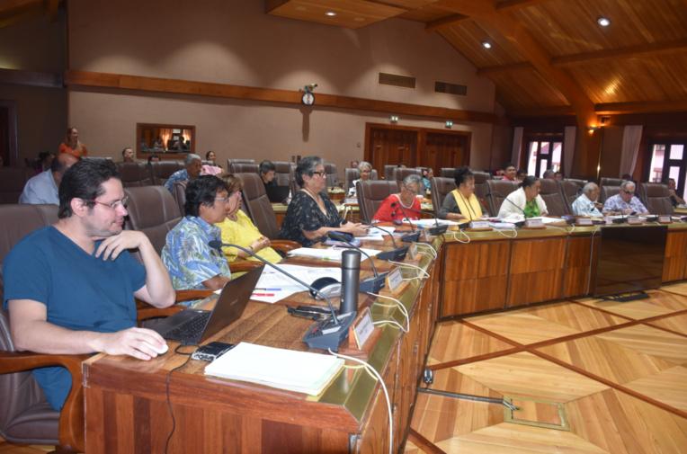 Les membres du Conseil économique, social, environnemental et culturel de la Polynésie française ont adopté plusieurs avis afin de simplifier le nouveau code des marchés publics.