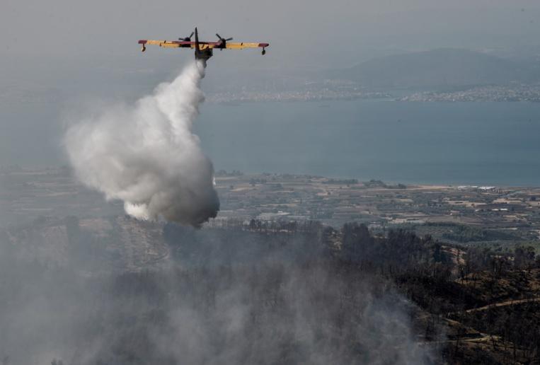 """""""Catastrophe écologique"""" sur l'île grecque d'Eubée ravagée par les flammes"""