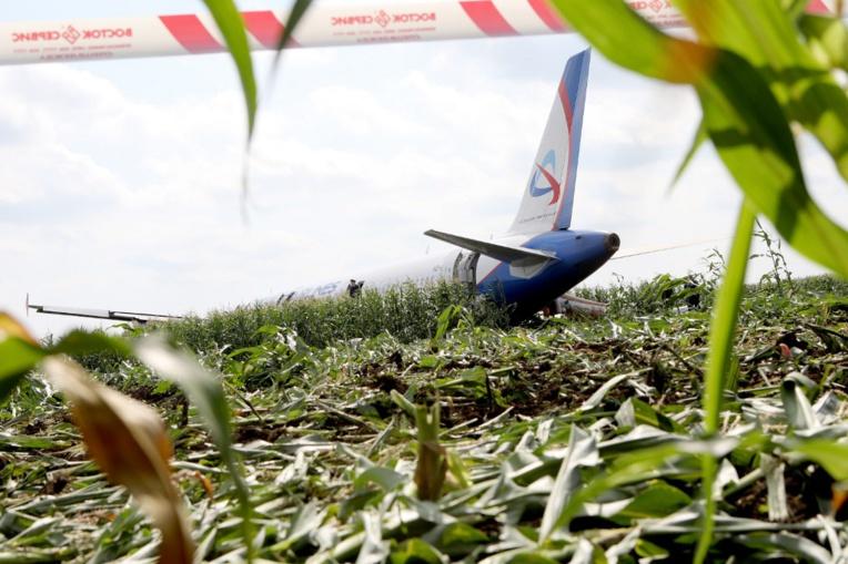 """Russie : un Airbus atterrit d'urgence dans un champ de maïs, les pilotes salués en """"héros"""""""