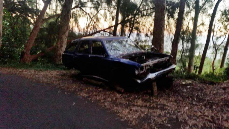 Pendant deux heures lundi, les services techniques ont dû élaguer les arbres sur le tronçon de la route.