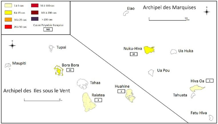 Le nombre de cas de dengue 2 recensés aux îles Sous-le-vent et aux Marquises du 10 février au 2 septembre 2019.