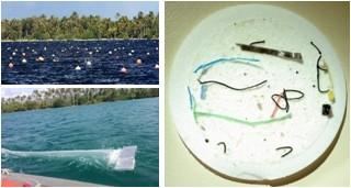 Des micro-plastiques dans nos lagons