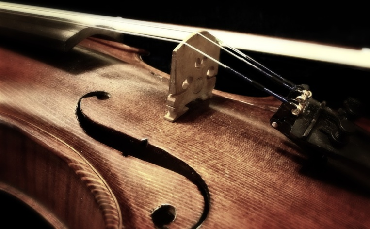GB : un violon de 310 ans oublié dans un train