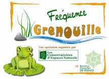 """""""Fréquence grenouille"""": pour aider les amphibiens et sensibiliser le public"""