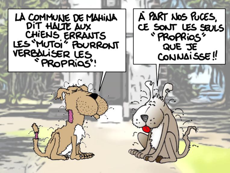 """""""Puces de chiens"""", par Munoz"""