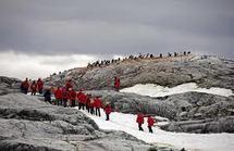 Touristes et chercheurs risquent de bouleverser les écosystèmes antarctiques