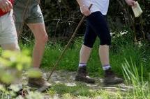 Marcher régulièrement réduirait les prédispositions génétiques à l'obésité