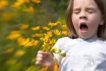 """Un voyage ludique au coeur des pollens pour """"sensibiliser"""" sur l'allergie"""