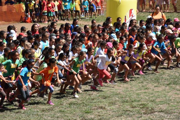 L'élite du cross scolaire polynésien avait rendez-vous mardi à l'hippodrome de Pirae.