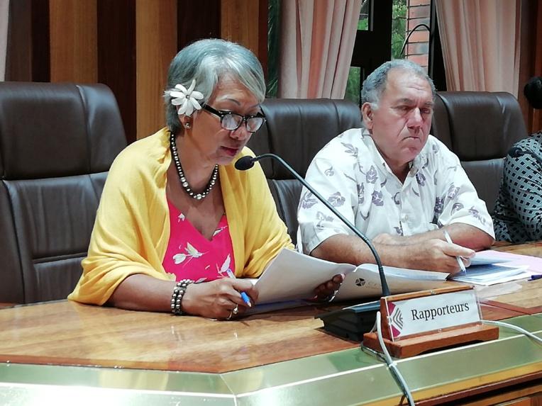 Marcelle Howard et Yannick Lowgreen, rapporteurs sur le projet d'avis concernant l'organisation de la filière vanille.