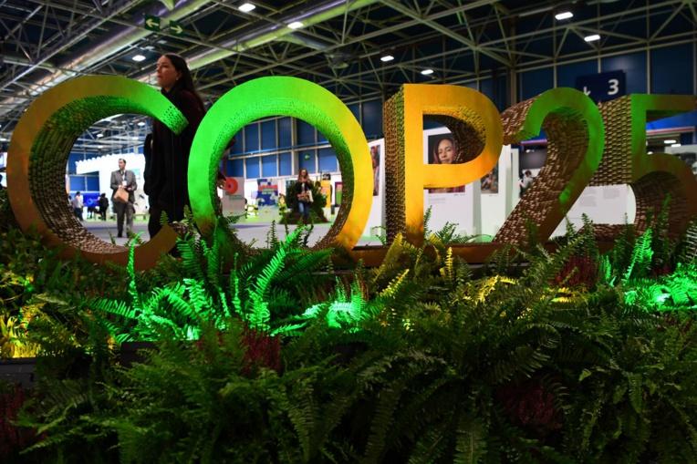 A Madrid, une marche pour le climat pour mettre la pression sur la COP25