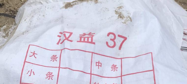 Les sacs de Faaone tombés d'un palangrier chinois