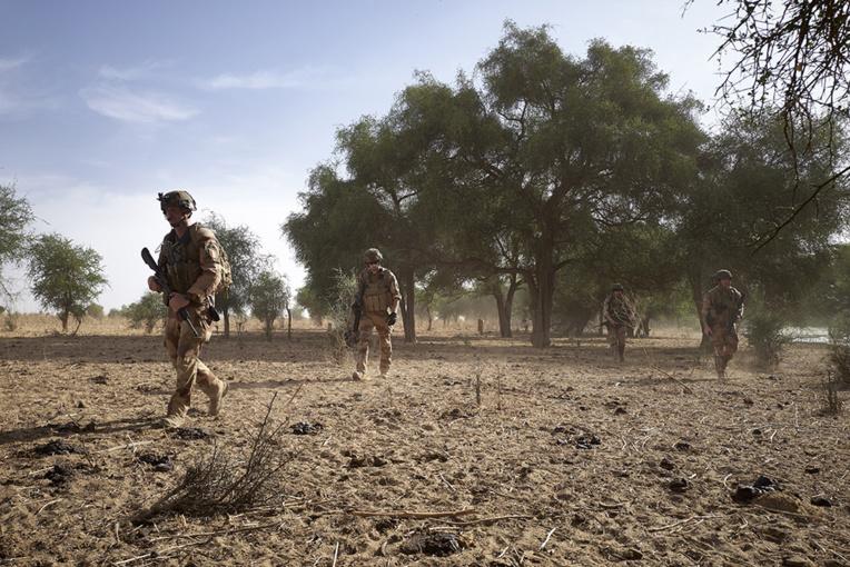"""Environ 25 jihadistes """"neutralisés"""" au Sahel"""