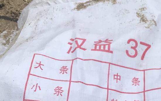 Les sacs de Faaone propriété d'un navire chinois coulé