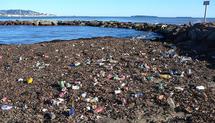 Sixième continent de déchets en mer : questions aux candidats
