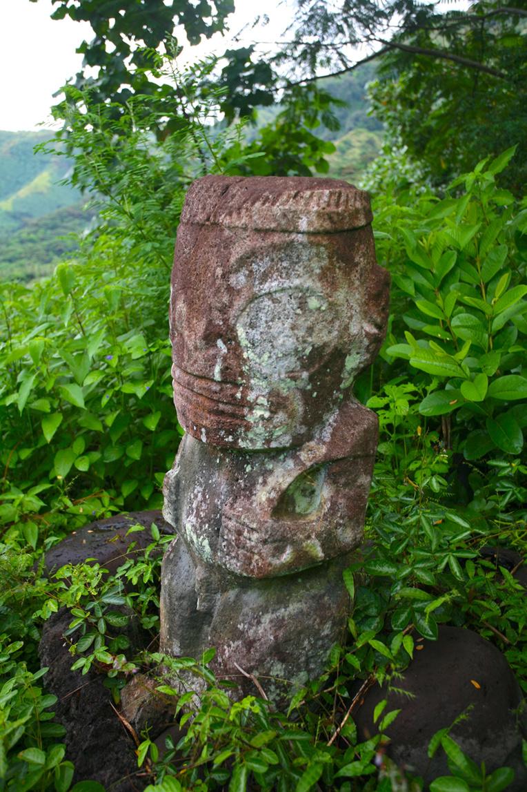 Le suberpe tiki couronné Moeone de Hanapaaoa, dominant le site où il se trouve, en pleine forêt.