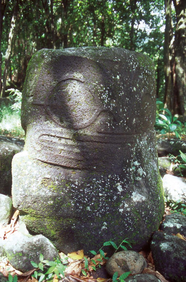Le grand tiki sur les hauteurs de Taaoa est presque noyé par la forêt le dominant. Nul ne sait qui il était ni quels étaient ses pouvoirs, son « mana ».
