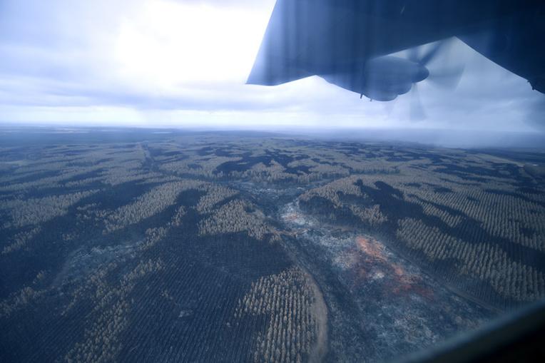 La pluie, enfin, sur les incendies en Australie