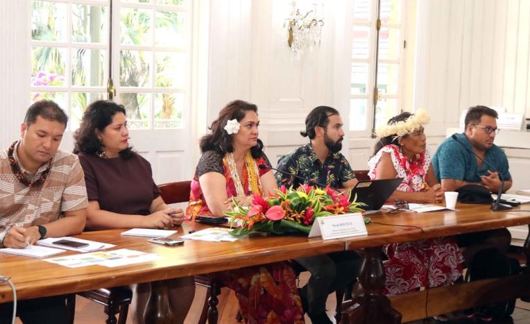 Réflexions sur les transferts de touristes dans les îles