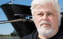 Watson poursuivra son combat pour les océans même s'il est extradé au Costa Rica